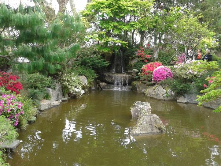 Cascata do Jardim Japonês