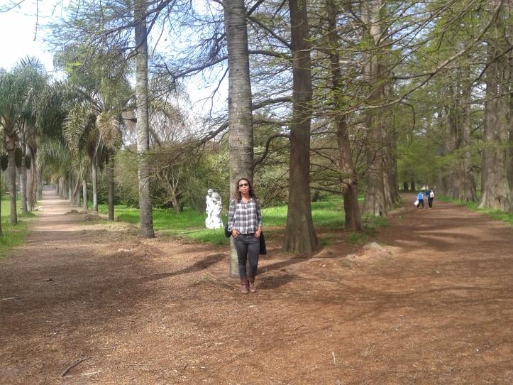 Corredores arborizados do Jardim Botânico
