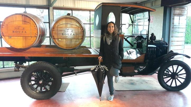 Coleção de veículos antigos da Bodega Bouza