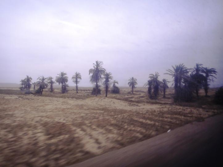 Paisagem do deserto em Paracas
