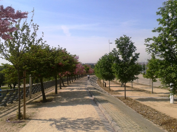 Ciclovia Parque Juan Carlos I