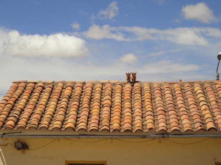 3-touritos-de-pukara-no-telhado