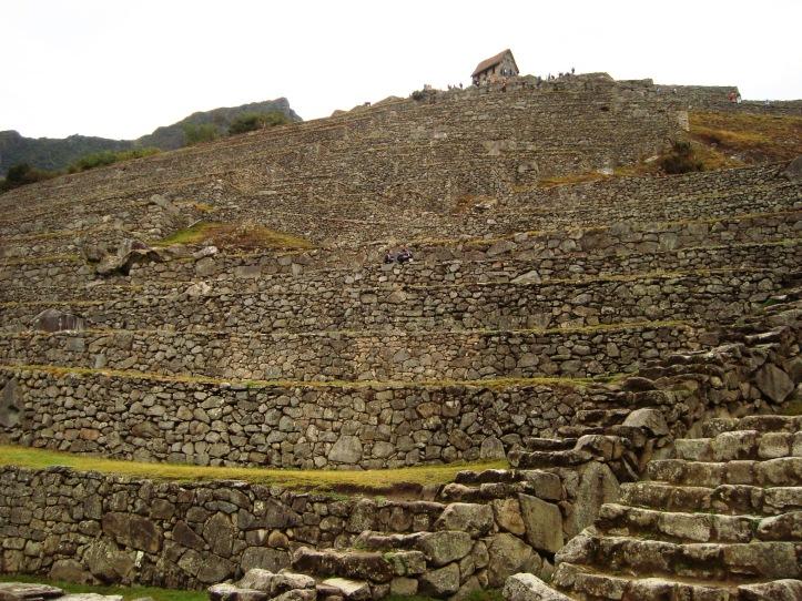 Terrazas de Machu Pichu