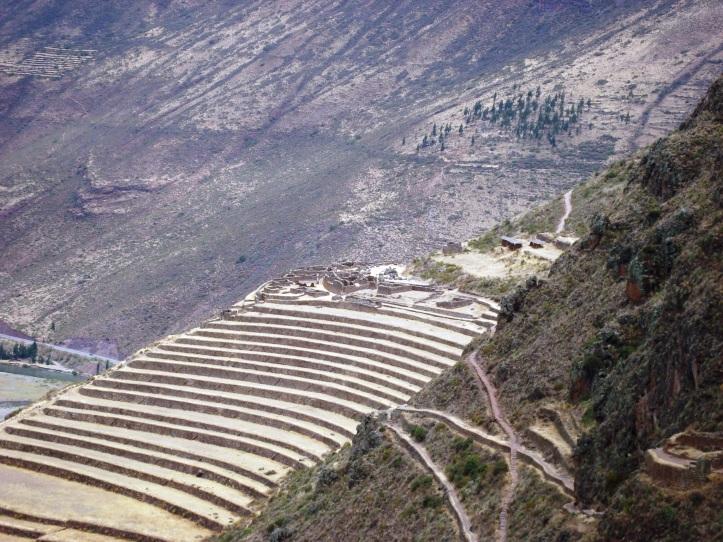Terrazas para agricultura