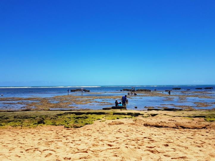 Arrecifes na Praia do Chapéu