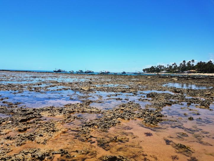 Arrecifes da praia do Portinho