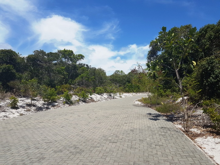 Parque Municipal Klaus Peters - início da trilha
